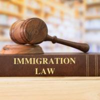 immigration-law-book-jpg-crdownload